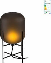 Pulpo - Oda Leuchte small, smoky grey acetato /