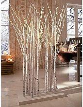 Pureday LED Dekoobjekt Birkenwald - Beleuchtete