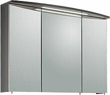 Puris Speed Spiegelschrank 100 cm