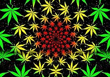 Puzzle 1000 teile Grüne Pflanze Blatt Cannabis