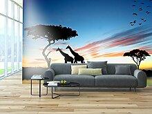 PVC Fototapete – ECO Wandbild Selbstklebende
