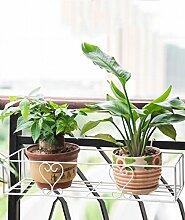 QiangDa Pflanze Regal- Balkon Geländer Blume Haube Hängen Hängen Rahmen Hängen Eisen Topf Blumen Regal Eingelegtes Regal kreatives Blumengestell ( größe : 60 )