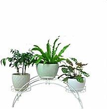 QiangDa Pflanze Regal- Europäische - Stil Indoor Eisen kreative Blumen Racks Eingelegtes Regal kreatives Blumengestell ( Farbe : Weiß )