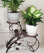 QiangDa Pflanze Regal- Europäische - Stil Mehrstöckige Eisen Blumenregale Balkon Blumentöpfe Regal Wohnzimmer Kreative Blumenregale Eingelegtes Regal kreatives Blumengestell ( Farbe : Messing )