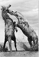 QianLei Bild mit Pferden Tier Leinwand Wandplakate