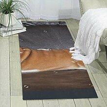 Qing_II Teppichläufer 60 x 180 cm Foto Englische