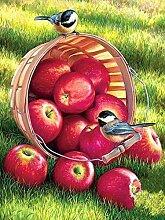 qiulv rot Apfel DIY Gemälde Stickerei Harz Acryl