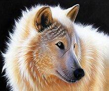 qiulv Wolf DIY 5D Diamant Malerei Schwarz Wolf