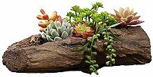 QJXSAN Blumentopf Holz Nachahmung grüne Wurzel