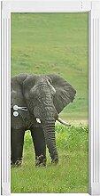 QQFENG Türtapete Wandbilder 3D Elefant Tier