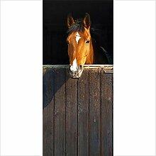QQFENG Türtapete Wandbilder Abnehmbares Pferd