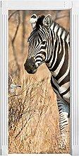 QQFENG Türtapete Wandbilder Zebra Tier 3D