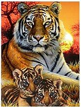 QQYYYT Diamantzeichnung Tiger Handarbeiten