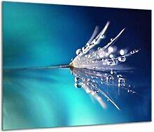QTA | Herdabdeckplatte 60x52 Einteilig Glas
