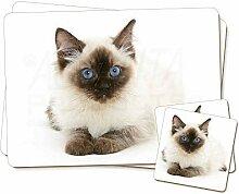 Ragdoll Katze mit blauen Augen Twin 2x Platzsets