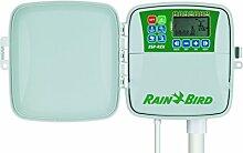 Rain Bird RZX6–Bewässerung Timer 6Stationen, für Außen