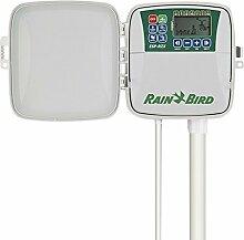 Rain Bird rzx6e–Programmierer Bewässerung Elektro Außen