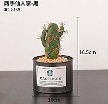 rainbowhh Topf Kaktus Kunstblumen Bonsai für