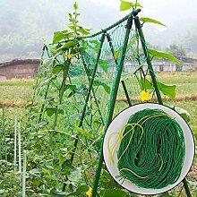 Ranknetz Pflanzennetz Stütznetz Gartennetz