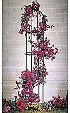 Ranksäule Rankhilfe Blumengitter Rankgestell,