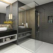 rapid teck walk in 10mm duschwand glas 60cm x 200cm esg sicherheitsglas duschabtrennung duschkabine duschabtrennung - Duschtrennwand Glas