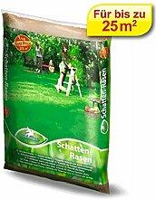 Rasenmischung Pegasus Schattenrasen 1 kg,1 Stück