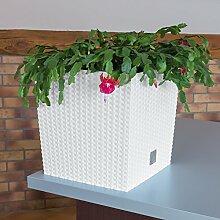 Blumentopf Aussen Gunstig Bei Lionshome Kaufen