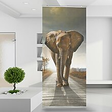 Raumteiler Big Elephant on Street Tier Elefant Safari Afrika Wand Stoff Mauer Bild Zimmer Dekoration Modern XXL Bahn einteilig No.117