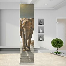 Raumteiler Big Elephant on Street Tier Elefant Safari Afrika Wand Stoff Mauer Bild Zimmer Dekoration Modern XXL Bahn einteilig No.RT60_117