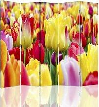 Raumteiler Colored Tulips mit 5 Paneelen