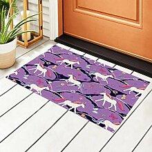 RAUP Indoor Fußmatte Einhorn Vektor Muster