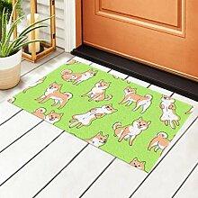 RAUP Indoor Fußmatte Shiba Inu Muster rutschfeste