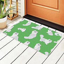 RAUP Indoor Fußmatte White Persian Cats Pattern