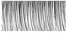 Rayher 2419202 Blumendraht, 0,35 mm ø, Spule 55