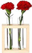 Reagenzglas Pflanzgefäß Glas Reagenzglas Vase