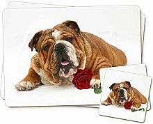 Red Bulldogge mit roter Rose Zwillings