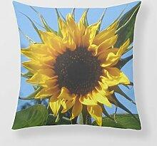 Refiring Decorative Throw Pillows Photo Flower Cushion Cover