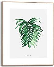 Reinders Bild mit Rahmen Areca Leaf, (1 St.)