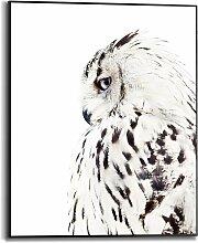 Reinders Bild mit Rahmen White Owl, (1 St.) B/H/T: