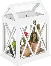 Relaxdays Mini Gewächshaus für Fensterbank,