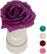 Relaxdays Rosenbox rund, 1 Rose, stabile Flowerbox