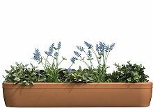 Rephorm - windowgreen Fensterbank Blumenkasten,
