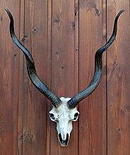 Replik kleiner Antilopenschädel Figur Antilope Trophäe Dekoration Deko Afrika