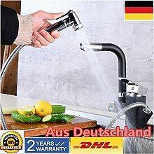 Retro Küchenspüle Wasserhahn mit Duschmischer