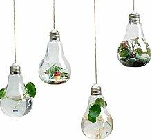 Rolanli Hängende Glasvase, 4 Stücke Glühbirne