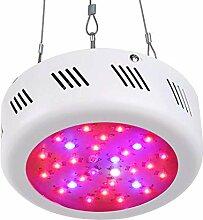 Roleadro LED Grow Lampe 300W UFO Pflanzenleuchte