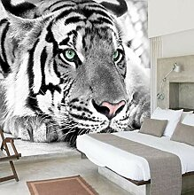 Rolle Der Tiere In Schwarz-Weiß-Tapete 3D Große