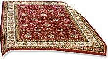 ROLLER Teppich Delhi - Rot - 200x290 cm