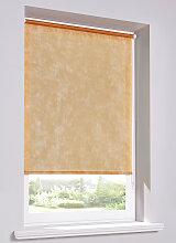 Rollo  Sichtschutz Vlies, orange ((H/B) 150/50 cm)
