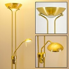 Rom Deckenfluter LED Messing, Gold, 2-flammig -